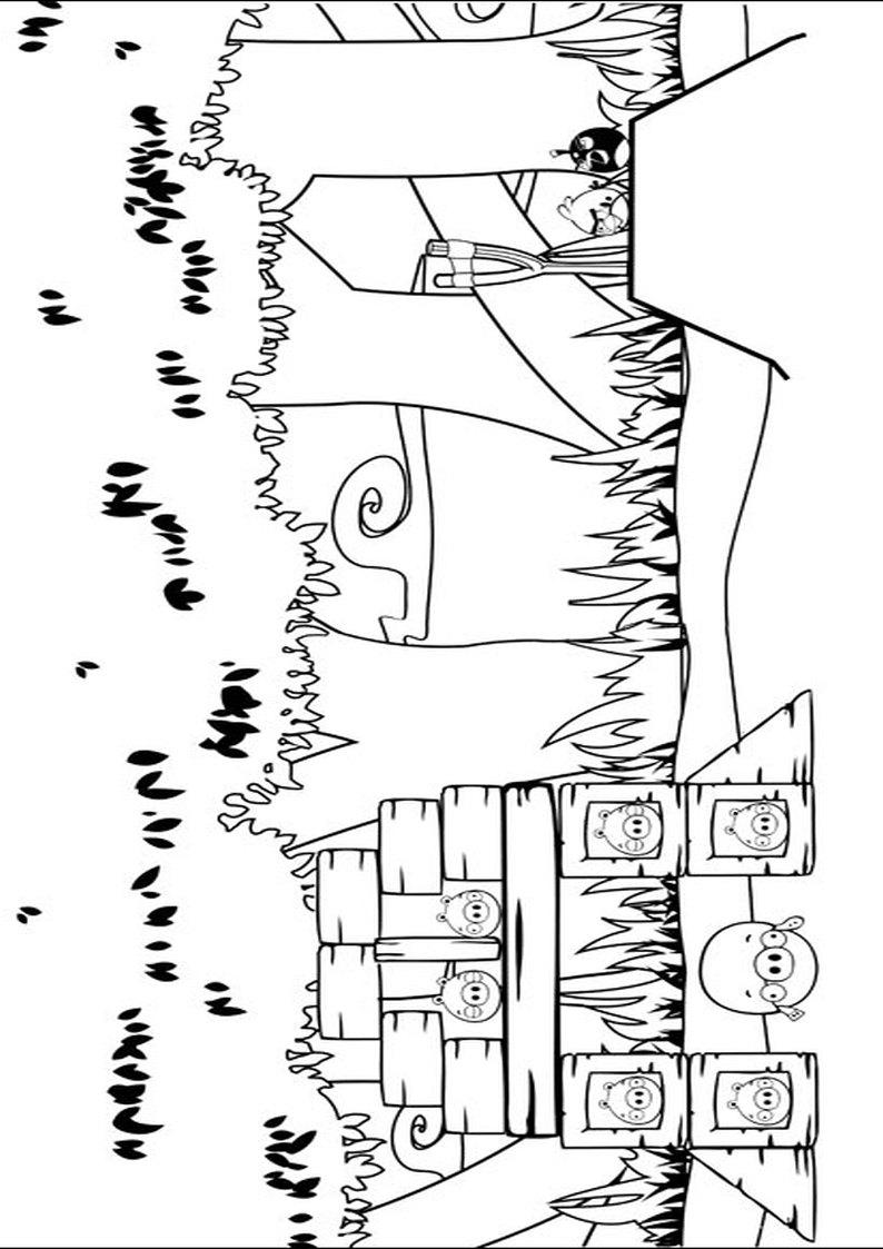 Kolorowanka Angry Birds I Bad Piggies Malowanka Nr 23