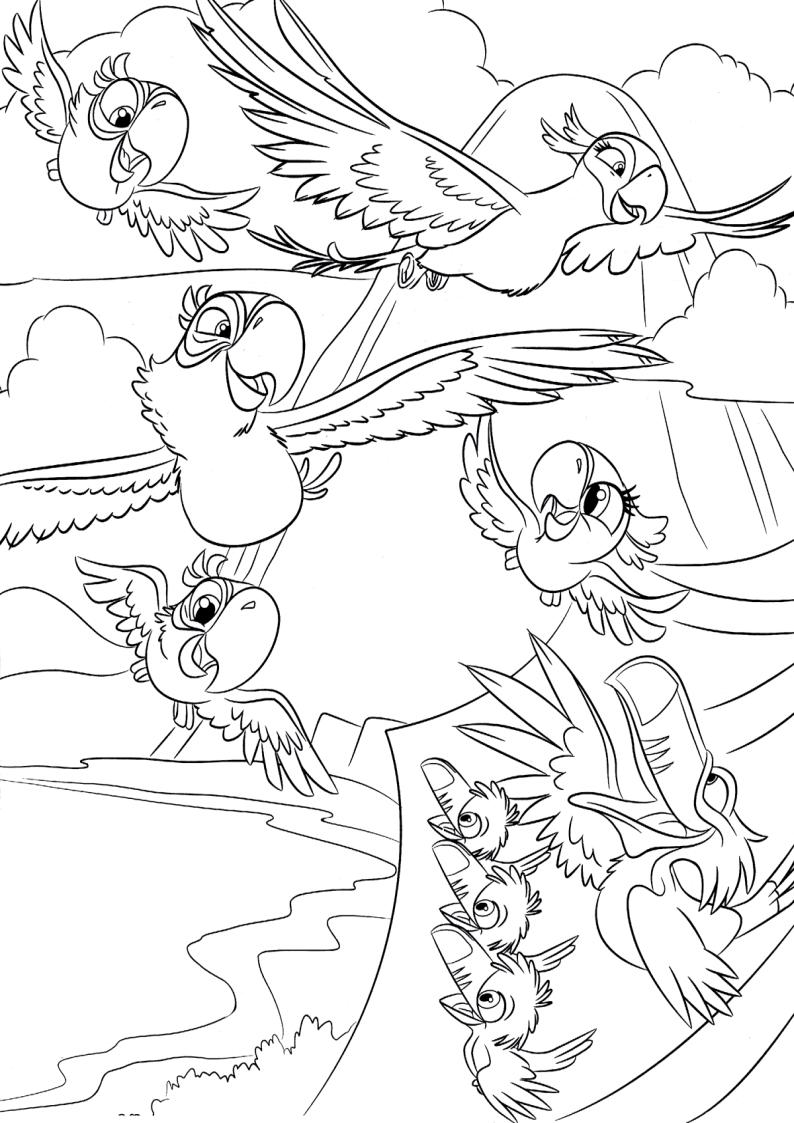 Kolorowanka Rio Papugi Nr 4