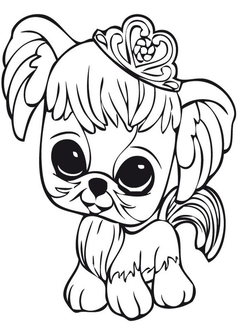 Kolorowanki Pet Shop Malowanka Nr 26
